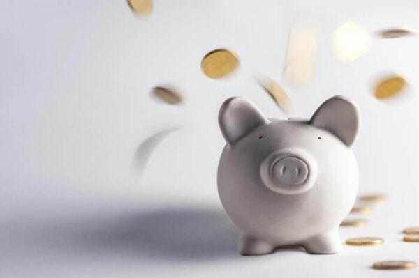 豚の貯金箱にお金が入る画像
